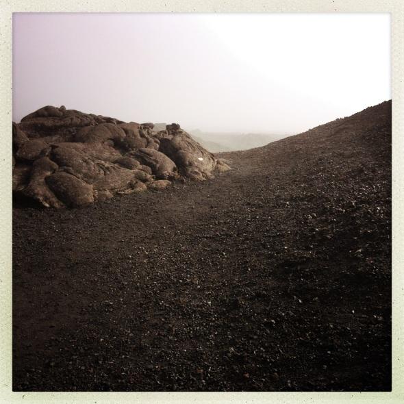 Les laves du Volcan (enclos Fouquet)